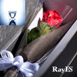 [ギフト用]RayES/レイエスダブルウォールグラスRDS-002300ml[2個入り・ラッピング・カード付]デザイン耐熱二重ガラス/誕生日祝い結婚祝い内祝い新築祝い退職祝い快気祝い還暦祝い引き出物プレゼントギフトホワイトデー新生活【あす楽】【RCP】