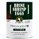 日本動物薬品 ブラインシュリンプ エッグス 425g缶入 【在庫有り】「1点まで」