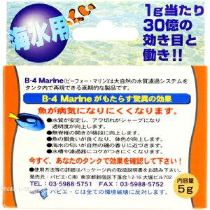 パピエCバクテリアB-4マリンJr5g『即』