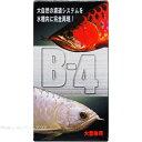 パピエC バクテリア B-4 大型魚用12g 【在庫あり】