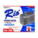 カミハタ パワーヘッドポンプ Rio+リオプラス1100 50Hz【在庫有】