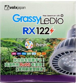 ボルクスジャパングラッシーレディオRX122?フレッシュ【在庫あり】