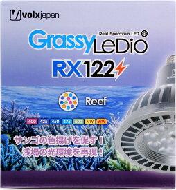 【送料無料】ボルクスジャパン グラッシーレディオ RX122 リーフ【特売】 【在庫有り】「2点まで」