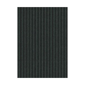 (まとめ) ヒサゴ リップルボード 薄口 A4ブラック RBU09A4 1パック(3枚) 【×30セット】