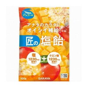 サラヤ 匠の塩飴マンゴー味100g 食品(代引不可)