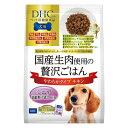 DHC 国産生肉贅沢ごはんチキンシニア700g【ポイント10倍】