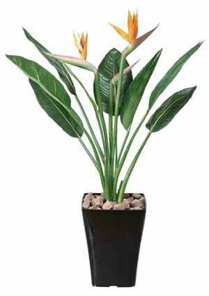 アートグリーン 人工観葉植物 光触媒 光の楽園 ストレチア花付きS1(代引き不可)【送料無料】【ポイント10倍】【inte_D1806】