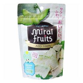 ミライフルーツ メロン 10g【S1】