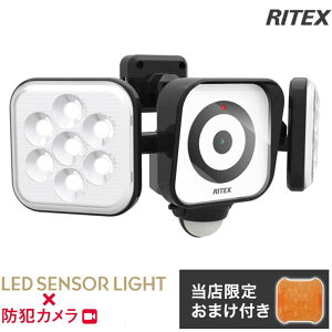 【限定おまけ付き】 RITEX ライテックス C-AC8160 LEDセンサーライト 防犯カメラ 8W×2灯 コンセント式 LED センサースリムライト 防災 防犯 人感センサー フリーアーム式 防雨 防水 (代引不可)【送