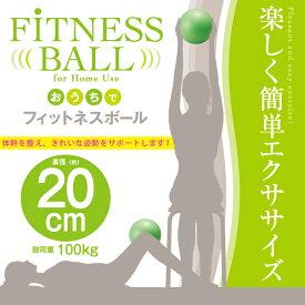 おうちでフィットネスボール 20cm(代引不可)【ポイント10倍】