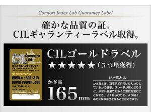 日本製羽毛布団クイーン掛けふとん【CILゴールドラベル】ホワイトダックダウン羽毛のためのアレルGプラス5年保証
