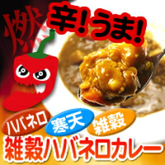 rcmdbe rakuten global market the popular curry of the diet food