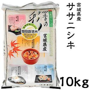 米 日本米 令和元年度産 宮城県産 ササニシキ 10kg ご注文をいただいてから精米します。【精米無料】【特別栽培米】【ささにしき】(代引き不可)【送料無料】