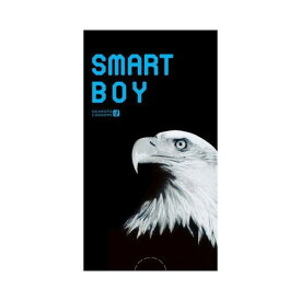 SMART BOY(スマート ボーイ)) 1箱12個入