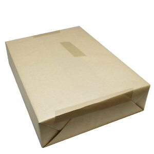 NTラシャ べに鮭 B4 116.2g (100kg) 500枚(代引不可)【送料無料】