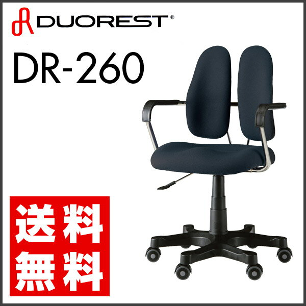 オフィスチェア デスクチェア デュオレスト DUOREST DR-260【送料無料】(代引き不可)