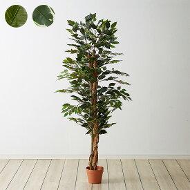人工観葉植物 フィカス ロータイプ ゴムの木 フェイクグリーン インテリアグリーン 造花 観葉植物 人工 フェイク グリーン(代引不可)【送料無料】