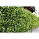 リアルグリーンフェンス 1m×1m ボックスウッド グリーンカーテン 日よけ フェイクグリーン 観葉植物 おしゃれ 装飾(…