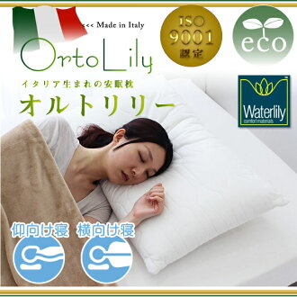 Fabe fabe pillow oltrelea Orto Lily made in Italy fabe's medical pillow sleep pillow ortopedico better sleep pillow manipulative memory foam pillow?