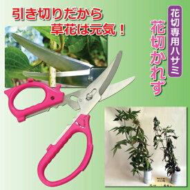 兼松工業 花切専用ハサミ 「花切かれず」 808338