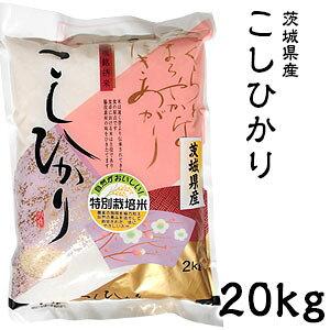 米 日本米 Aランク 令和2年度産 茨城県産 こしひかり 20kg ご注文をいただいてから精米します。【精米無料】【特別栽培米】【新米】【コシヒカリ】(代引き不可)【送料無料】