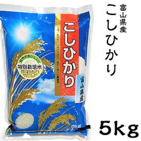 米 日本米 Aランク 令和2年度産 富山県産 こしひかり 5kg ご注文をいただいてから精米します。【精米無料】【特別栽培米】【こしひかり】【新米】(代引き不可)【送料無料】【S1】