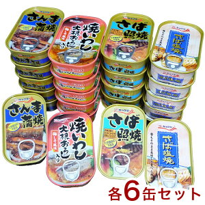 お魚惣菜缶 4種24缶セット さば照焼 焼いわし さんま蒲焼 さば塩焼 賞味期限3年 防災 災害対策 備蓄 非常食(代引不可)【送料無料】