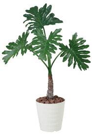 アートグリーン 人工観葉植物 光触媒 光の楽園 セローム1.0(代引き不可)【送料無料】