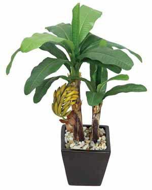 アートグリーン 人工観葉植物 光触媒 光の楽園 バナナ(代引き不可)
