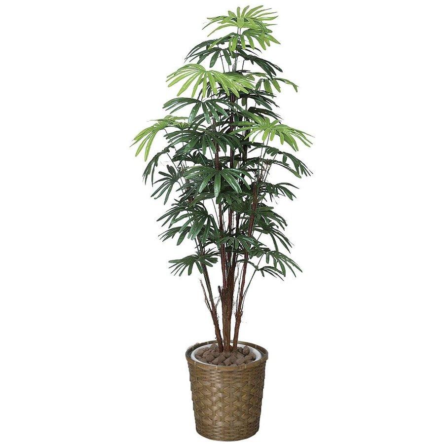 アートフラワー 人工観葉植物 光触媒 光の楽園 シュロチク1.6 鉢変更(代引き不可)【送料無料】