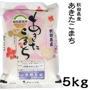 米 日本米 令和2年度産 秋田県産 あきたこまち 5kg ご注文をいただいてから精米します。【精米無料】【特別栽培米】【新米】(代引き不可)
