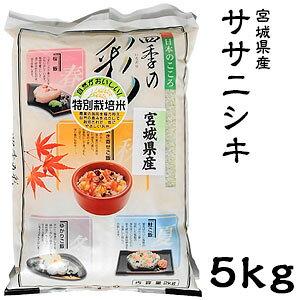 米 日本米 令和2年度産 宮城県産 ササニシキ 5kg ご注文をいただいてから精米します。【精米無料】【特別栽培米】【ささにしき】【新米】(代引き不可)