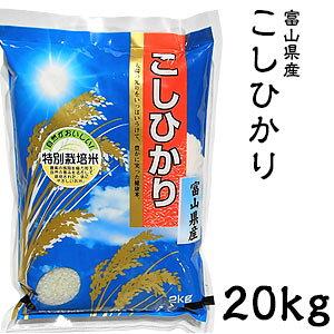 米 日本米 Aランク 令和2年度産 富山県産 こしひかり 20kg ご注文をいただいてから精米します。【精米無料】【特別栽培米】【こしひかり】【新米】(代引き不可)