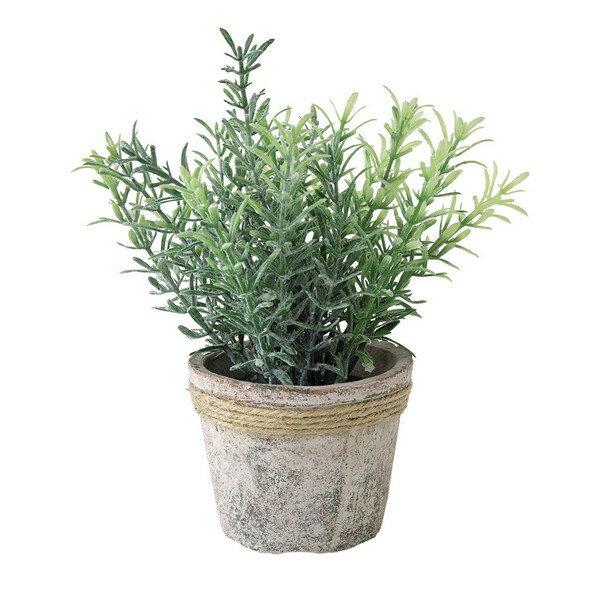 スパイス(SPICE) 観葉植物 フェイクグリーン イミテーションフラワー 造花 DECOR IMITATION ROSEMARY(代引不可)