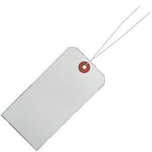 リュウグウ 針金荷札 100 一穴 1000枚入 HG-101 (1箱)