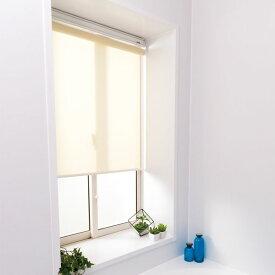 日本製 ロールスクリーン オーダー 1cm単位 浴室 浴室用 丸洗いOK 幅41~60cm 高さ91~180cm タチカワブラインドグループ(代引不可)【送料無料】
