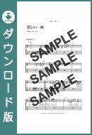 【ダウンロード楽譜】 美しい一夜(弾き語り)/浜田 省吾(ギター弾き語り譜譜 上級)
