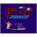 [3DS] 燃えろ!!プロ野球 (ダウンロード版)
