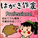 はがき作家 12 Professional (2019 亥年賀状テンプレートフォント付き) / 販売元:株式会社ルートプロ