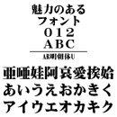 AR明朝体U MAC版TrueTypeフォント /販売元:株式会社シーアンドジイ