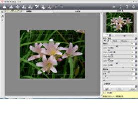 AKVIS ArtWork Home for Mac v.11.0 プラグイン版