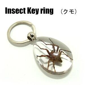 Insect Keyring【クモ】SK3910 キーホルダー/昆虫/アクセサリーパーツ/ペンダントトップにも/ストラップ/海外雑貨/キーリング/キーチャーム/レジン/樹脂