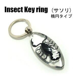 Insect Keyring【サソリ 楕円】SK0901K キーホルダー/昆虫/アクセサリーパーツ/ペンダントトップにも/ストラップ/海外雑貨/キーリング/キーチャーム/レジン/樹脂