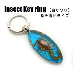 Insect Keyring【白サソリ(楕円・青色)】SK0901L1 キーホルダー/昆虫/アクセサリーパーツ/ペンダントトップにも/ストラップ/海外雑貨/キーリング/キーチャーム/レジン/樹脂