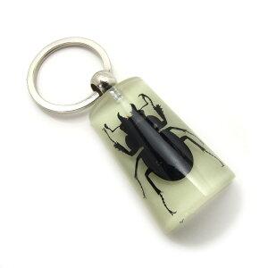 Insect Keyring【クワガタ 台形・夜光タイプ】SK0917D キーホルダー/昆虫/アクセサリーパーツ/ペンダントトップにも/ストラップ/海外雑貨/キーリング/キーチャーム/レジン/樹脂