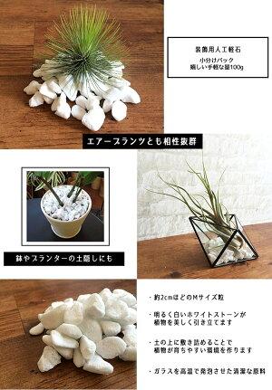 飾り石化粧石ホワイトストーン【WHITESTONE】白い石100g観葉植物ガーデニングインテリアグリーンエアプランツテラリウム02P18Jun16