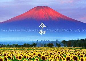 絵画風 壁紙ポスター (はがせるシール式) -令和版- 赤富士 朝焼けの富士山と向日葵畑 ひまわり 幸運 開運 縁起物 風水 パワースポット 【令和元年記念】 キャラクロ FJS-033AR2 (A2版 594mm×420