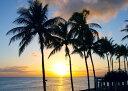 絵画風 壁紙ポスター (はがせるシール式) ワイキキビーチの日の出 ハワイ の朝陽 ヤシの木 キャラクロ HWI-004A1 (…