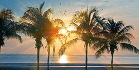 絵画風 壁紙ポスター (はがせるシール式) ハワイ オアフ島の夕陽とパームツリー 海 AT パノラマ キャラクロ HWI-101S1 (1152mm×576mm) 建築用壁紙+耐候性塗料 インテリア