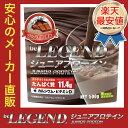 ビーレジェンド ジュニアプロテイン すくすくチョコ風味 500g (アミノ酸スコア100)【オススメ】